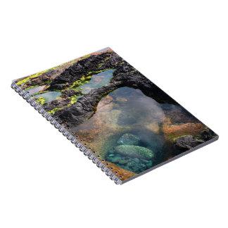 Tidal pools note book