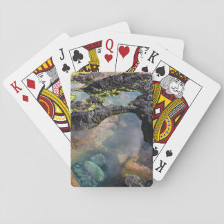 Tidal pools playing cards