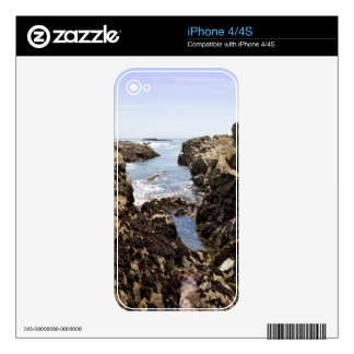 Tide Pool Skin For The iPhone 4
