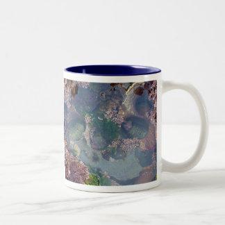 Tide Pools Mug