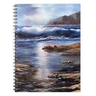 Tide Pools Notebooks