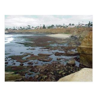 Tidepools Ocean Beach Cliffs Postcard