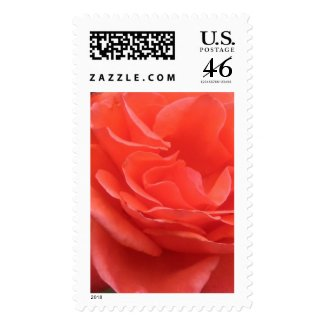 Tides of Peach Rose Flower Photo Postage Stamps