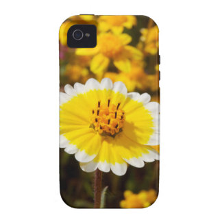 Tidy Tip Wildflowers iPhone 4 Cover
