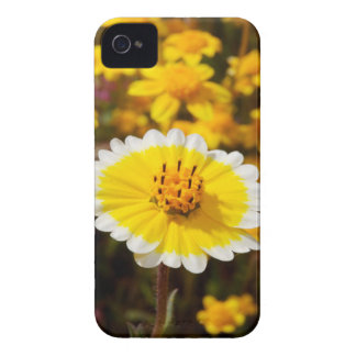 Tidy Tip Wildflowers iPhone 4 Cases