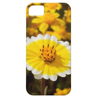 Tidy Tip Wildflowers iPhone 5 Case