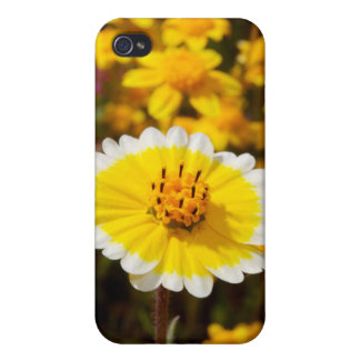Tidy Tip Wildflowers Case For iPhone 4