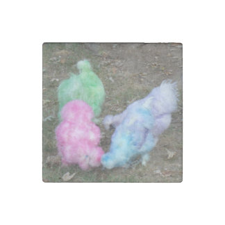 Tie Dyed Silkie Chickens in Pastel Easter Colors Stone Magnet