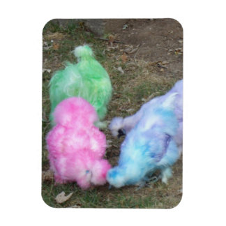 Tie Dyed Silkie Chickens in Pastel Easter Colors Flexible Magnet