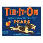 Tie-It-On Pears Vintage Advertisement Postcard