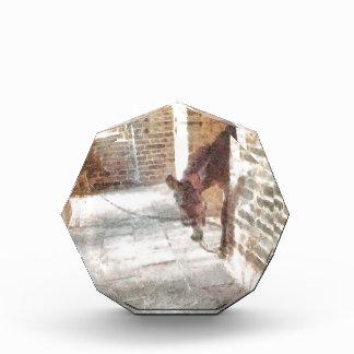 Tied donkey in brick structure acrylic award