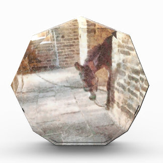 Tied donkey in brick structure award