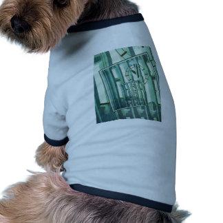 Tiempo cambiante ropa perro