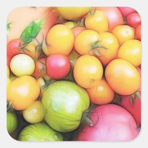 ¡Tiempo de cosecha - tomates! Pegatina Cuadrada