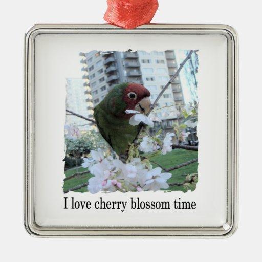 Tiempo de la flor de cerezo adorno cuadrado plateado