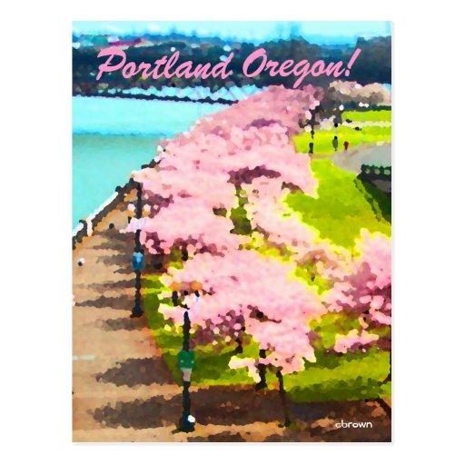 Tiempo de la flor de cerezo postal