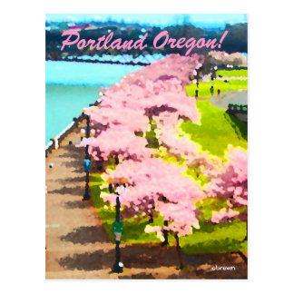 Tiempo de la flor de cerezo postales