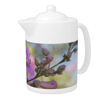 Tiempo de la meditación del té de los colores en c