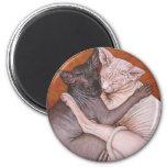 Tiempo de la siesta de los gatos del gato de la es imán redondo 5 cm