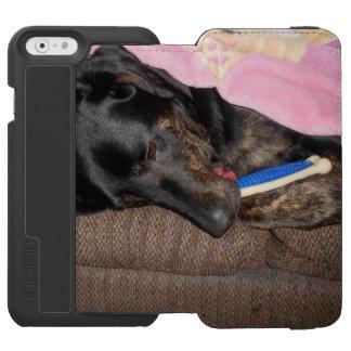 Tiempo de la siesta del chapoteo funda billetera para iPhone 6 watson
