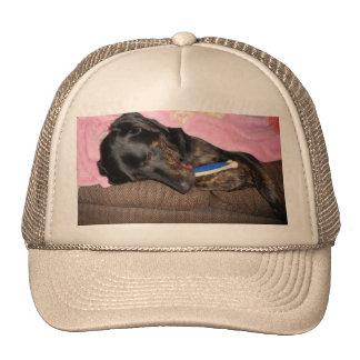 Tiempo de la siesta del chapoteo gorras de camionero