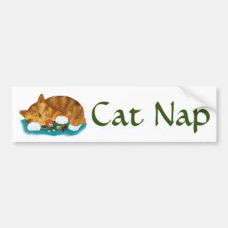 Tiempo de la siesta para el gatito del tigre del pegatina para auto