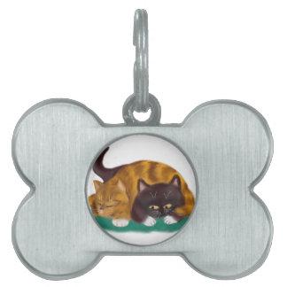 Tiempo de la siesta tirado a través de gatito placa de nombre de mascota