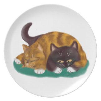 Tiempo de la siesta tirado a través de gatito platos