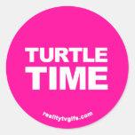 Tiempo de la tortuga - pegatinas