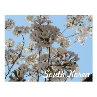 Tiempo de primavera tarjetas postales