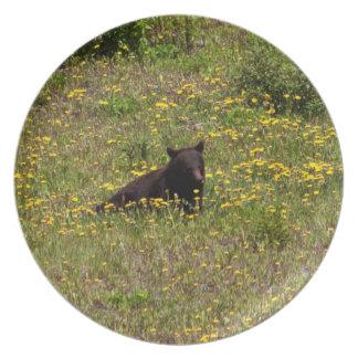 Tiempo del bocado del oso negro de BLST Plato