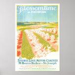 Tiempo del flor en Michigan Posters