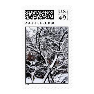 Tiempo del invierno sello