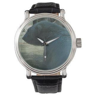 Tiempo del oso polar relojes de pulsera