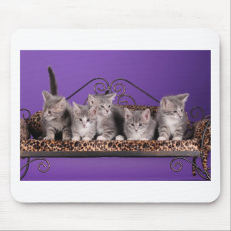 Tiempo del sofá del gatito alfombrillas de raton