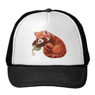 Tiempo del té de la panda roja gorra