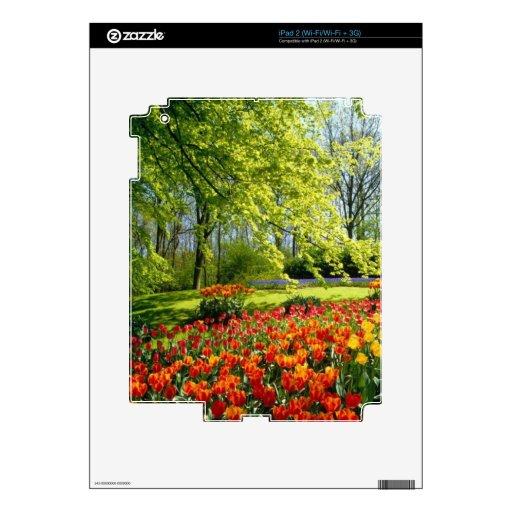 Tiempo del tulipán, jardines en Keukenhof Skin Para El iPad 2