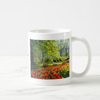 Tiempo del tulipán, jardines en Keukenhof Taza