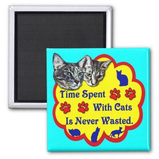Tiempo pasado con los gatos imán para frigorifico