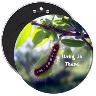 Tienda Caterpillar de bosque 1 botón Pin Redondo De 6 Pulgadas