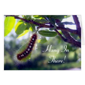 Tienda Caterpillar de bosque 1 tarjeta de felicita