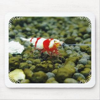 Tienda de regalos roja hermosa del camarón de la a alfombrilla de ratones