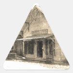 Tienda general del vintage calcomanía de trianguladas