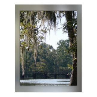 Tienda un puente sobre en la postal de los pantano