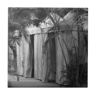 tiendas blancas detrás del bw de las frondas de la teja cerámica