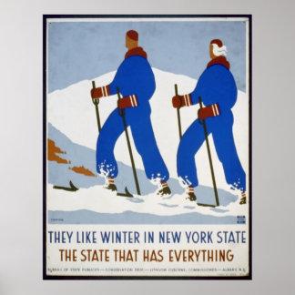 Tienen gusto de invierno en el Estado de Nuevo Yor Póster