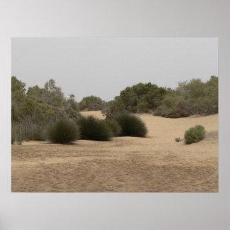 Tierra 1 del desierto póster