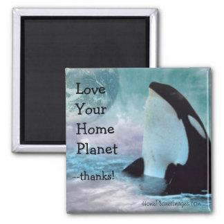 Tierra/amor de la orca su imán casero del planeta