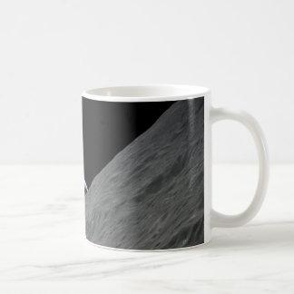 Tierra creciente tazas de café