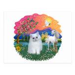 Tierra de la fantasía (FF) - gatito persa (blanco) Postal
